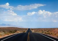 A1 Nevada Desert Poster Art Print 60 x 90cm 180gsm USA Road Trip Fun Gift #13068