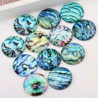 Mix Seashell Abalone Photo Round Dome Glass Cabochon 8/10/12/14/16/18/20/25/30mm