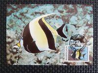 MALEDIVES MK TROPICAL FISH FISCHE FISCH MAXIMUMKARTE CARTE MAXIMUM CARD MC c5271
