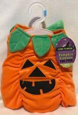 Halloween - Pumpkin Costume - Small - Brand New
