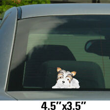 Biewer Yorkie full body Stickers, Decals 005