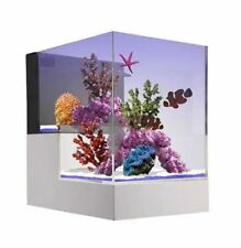 Miniaquarium