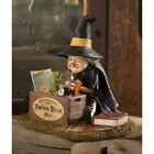Bethany Lowe DIY Fortune Tellers Kit Witch Halloween Figure TD0063