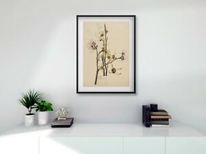Rennie Mackintosh black FRAMED PRINT Witch Hazel A4 digital print 11 x 14 frame