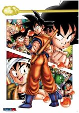 Dragon Ball Poster (98X68 ) Son Goku Story