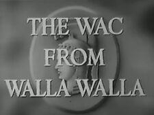 THE WAC FROM WALLA WALLA (1952) DVD JUDY CANOVA, STEPHEN DUNNE