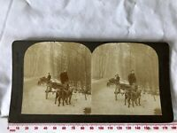 DOG-PULLED CARTS HAGUE HOLLAND Antique Sepia EXCELSIOR VIEWS BURNLEY Stereoview