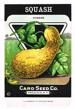 VINTAGE SEED PACKET 1920 GENERAL STORE FREDONIA NEW YORK CRESS OR PEPPER GRASS