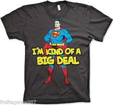 SUPERMAN BIG DEAL  T-Shirt  camiseta cotton officially licensed