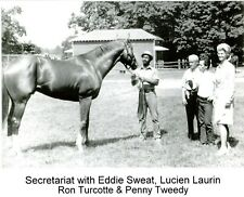 "1973 - SECRETARIAT in the Barn Area with Connections - 10"" x 8"""