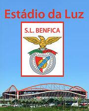 S.L. Benfica - Estádio da Luz  - 8x10 Color Photo