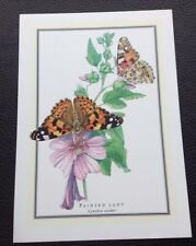 POSTCARD: PAINTED LADY: CYNTHIA CARDUI: UN POSTED