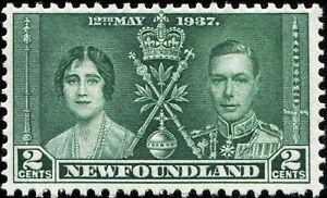Newfoundland Scott 230 Queen Elizabeth & King George VI  MLH OG (17828)