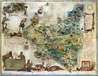Central Board of Polish State Forests Poland 1938 pictorial map POSTER 12154001