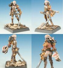 freebooter's Fate - REGICIDE - Freebooter MINIATURES Valkyrie PIRATES pir014
