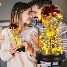Beauty and The Beast Rose LED Light Gold Foil Flower Glass Dome Mothers Day Gift