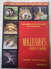 ANCIENNE DOCUMENTATION/IMAGES SCOLAIRE ARNAUD N°127 MOLLUSQUES CRUSTACÉS DE 1976