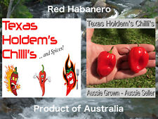 35 x Red Habanero Chilli Seeds - 35 Chili seeds per pack