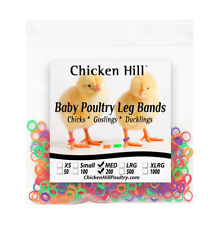 """Chick Leg Bands ~4 colors 1/4""""  Size 4 Poultry Chickens Ducks Geese Game Birds"""
