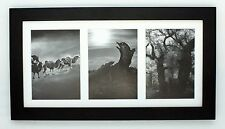 """9x18 Black Wood Collage Frame with Mat for (3) 5""""x7"""" pictures with REAL GLASS"""