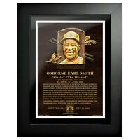 """Ozzie Smith St. Louis Cardinals Hall of Fame Gallery Photo (14"""" x 18"""") Framed"""