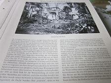 Köln Archiv 5 Alltag 5064 Palmenhaus der Flora gebr. 1864