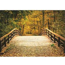 5x7ft Autumn Fall Bridge Photography Vinyl Background Studio Photo Backdrop Prop