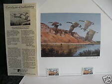 1992 IDAHO State MIGRATORY WATERFOWL Print with Stamps Limited Edition # 594