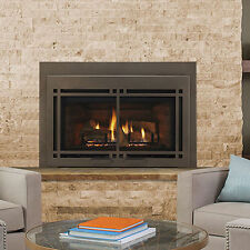 "Majestic Ruby 35"" Direct Vent Gas Insert Fireplace MDVI35IN w/ Blower & Remote"