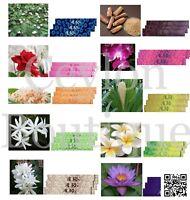 Aura Incense 10 Sticks in 1 Packet - Sandalwood, Rose & Jasmine Fragrance Stick