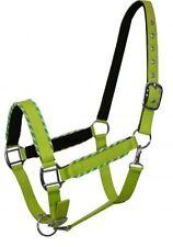 Showman LIME Nylon Neoprene Lined Horse Halter W/ Rope Border Design! HORSE TACK