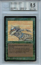 MTG Arabian Nights Sandstorm BGS 8.5 Card Magic the Gathering WOTC 3554