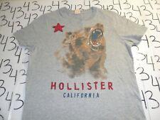 Small  Hollister T Shirt