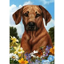 Summer House Flag - Rhodesian Ridgeback 18088