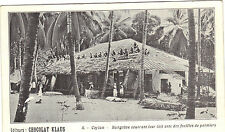 Ceilán - Bungalow cobertura total su techo con papel - Chocolate Klaus (6433)