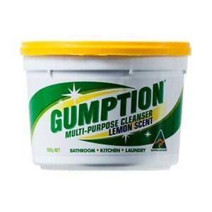 Gumption Paste Multipurpose Cleanser Cleaner 500g Bathroom Kitchen Laundry