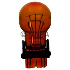 Turn Signal Light Bulb-2 Door, Cab and Chassis NAPA/LAMPS-LMP 3757NALL