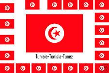 Assortiment lot de 10 autocollants Vinyle stickers drapeau Tunisie-Tunisia-Tunez