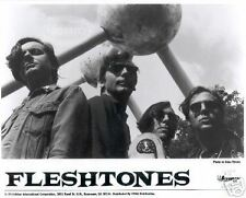 Fleshtones Promo 8X10 Photo indie garage Super Rock