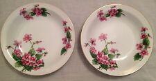 2 Hira Fine China soup bowls, made in Japan, Nydia floral design, 12 oz capacity