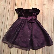 Toddler Girl Jona Michelle Purple Velvet and Sparkle Dress Size 2T Party Holiday