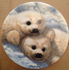 Baby Seals Royal Grafton Bradford Exchange Collectible Plate