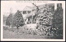 BEDFORD VA Bronze Elk BOPE Elks National Home Vtg B&W Postcard Old Virginia PC