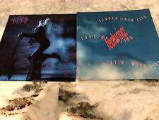 Lita Ford 2 Promo Album Flats Dangerous Curves 1991 12in X 12in