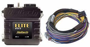 Haltech HT-150402 Elite 550 ECU +2.5m (8 ft) Basic Universal Wire-in Harness Kit
