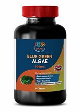 energy vitamins for men - ORGANIC BLUE GREEN ALGAE 500MG 1B - spirulina raw orga