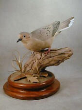 Mourning Dove Original Wood Carving