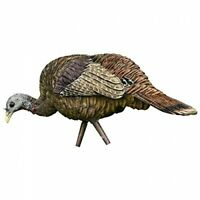 NEW Feeder Turkey Decoy LCD Hen Collapsible  Avian X Zink Calls FREE SHIPPING
