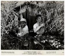 The African Queen Original Photo Humphrey Bogart Katharine Hepburn 1952 classic