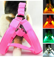 LED Glow Flash Light Dog Puppy Belt Harness Leash Tether Pet Safety Collar Rope~
